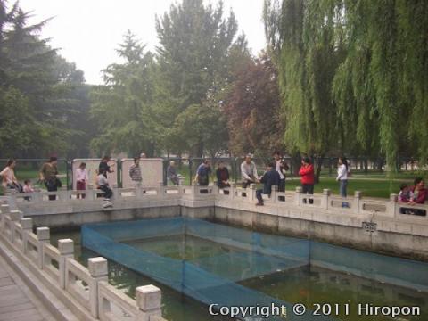 故宮博物館(北京) 4